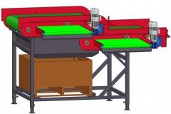 Zantedeschia Schoningsmachine